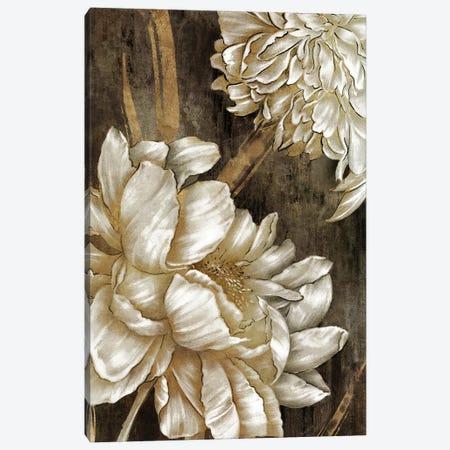 Golden Grace I Canvas Print #EWA466} by Eva Watts Canvas Artwork