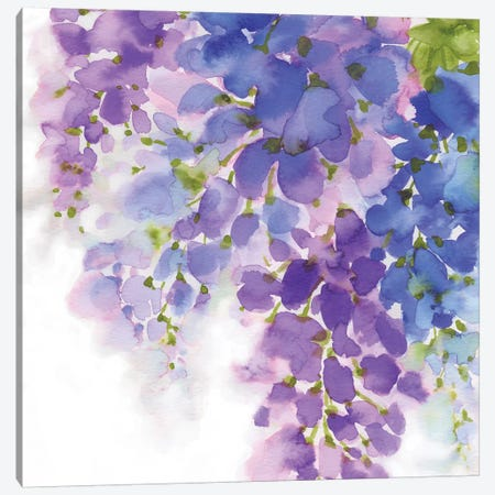Wisteria I Canvas Print #EWA50} by Eva Watts Canvas Art Print
