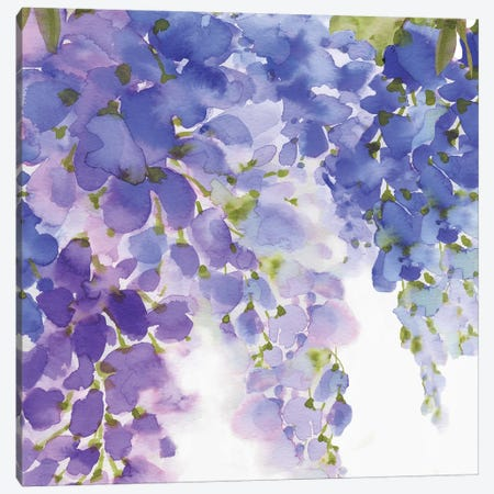 Wisteria II Canvas Print #EWA51} by Eva Watts Art Print