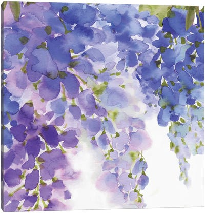 Wisteria II Canvas Art Print