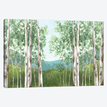 Behind Mountains Canvas Print #EWA55} by Eva Watts Canvas Art