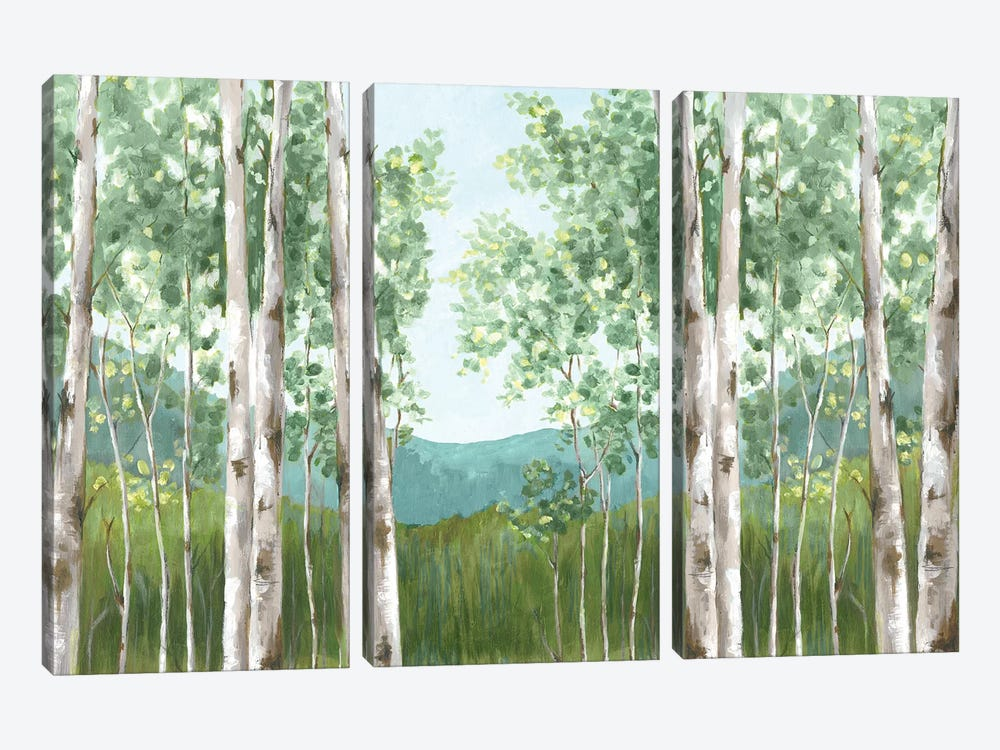 Behind Mountains by Eva Watts 3-piece Canvas Art Print