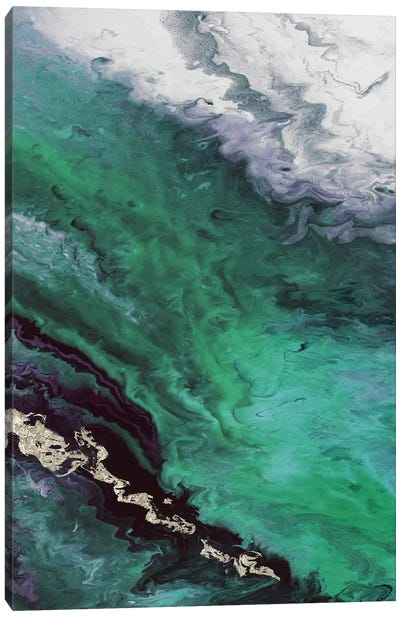 Green Shore Line From Above Canvas Art Print