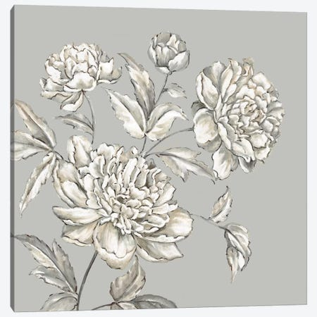 Botanical I Canvas Print #EWA6} by Eva Watts Canvas Wall Art