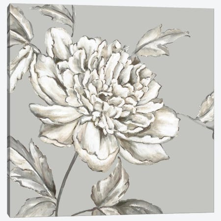 Botanical II Canvas Print #EWA7} by Eva Watts Canvas Wall Art