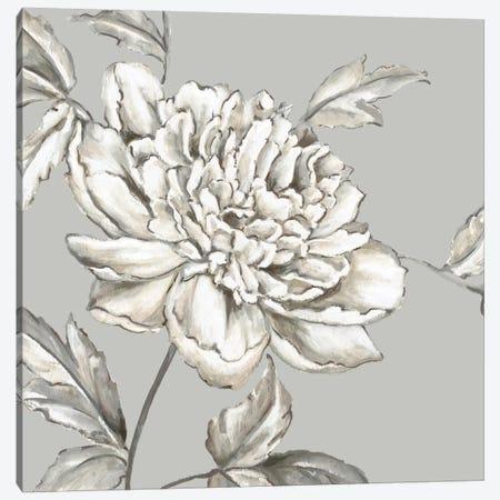 Botanical II Canvas Print #EWA7} by Eva Watts Canvas Wall Art