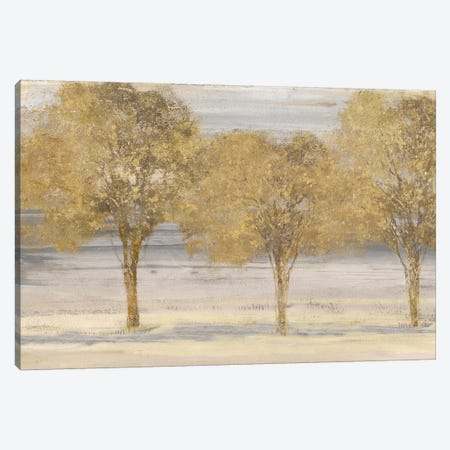Through The Forest Canvas Print #EWA81} by Eva Watts Canvas Artwork