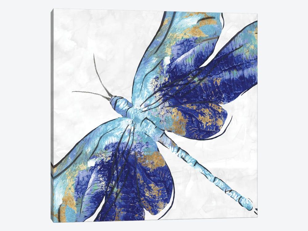 Blue Dragonfly  by Eva Watts 1-piece Canvas Wall Art
