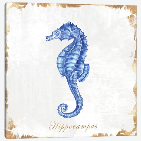 Blue Sea Horse Canvas Print #EWA87} by Eva Watts Canvas Print
