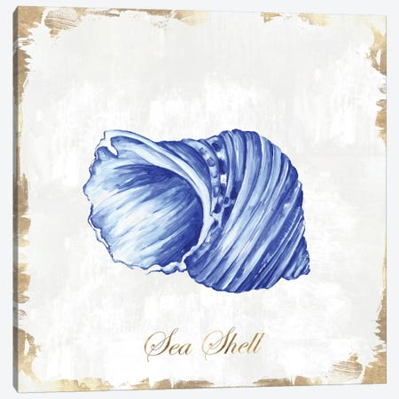 Blue Seashell Canvas Print #EWA88} by Eva Watts Canvas Artwork