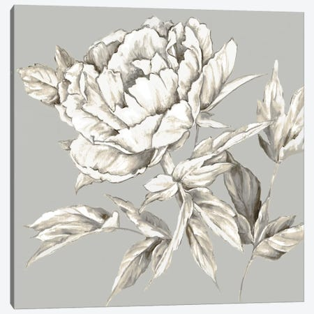 Botanical III Canvas Print #EWA8} by Eva Watts Canvas Art Print