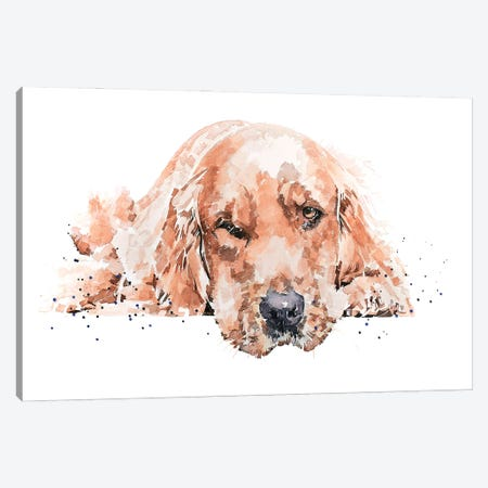 Golden Retriever Reclined I Canvas Print #EWC100} by EdsWatercolours Canvas Print