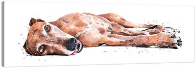 Greyhound Canvas Art Print