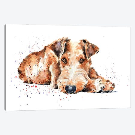 Irish Terrier I Canvas Print #EWC118} by EdsWatercolours Canvas Wall Art