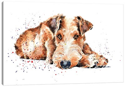 Irish Terrier I Canvas Art Print
