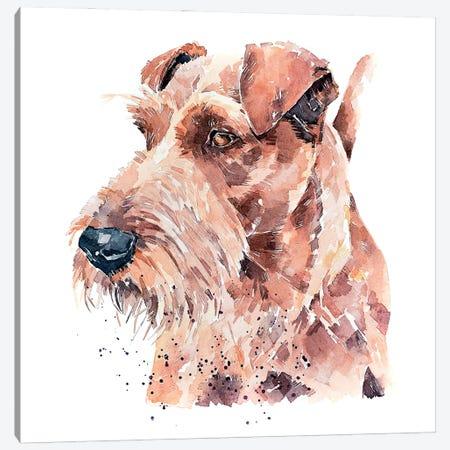 Irish Terrier Pride Canvas Print #EWC122} by EdsWatercolours Canvas Print