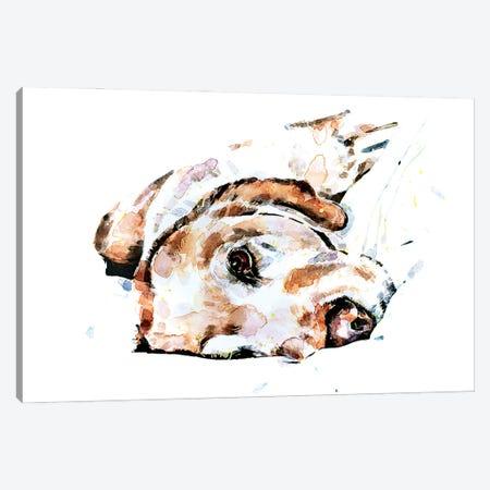 Labrador Relaxation Canvas Print #EWC128} by EdsWatercolours Art Print