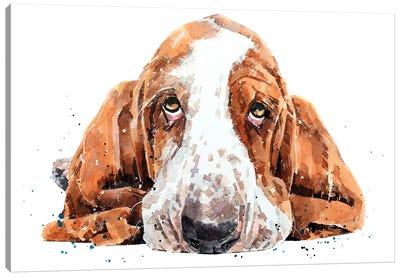 Basset Canvas Art Print