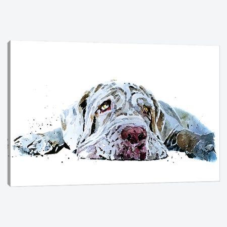 Neapolitan Mastiff Puppy Love Canvas Print #EWC142} by EdsWatercolours Art Print