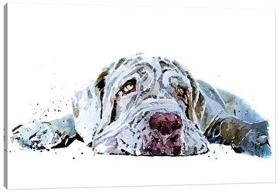 Neapolitan Mastiff Puppy Love Canvas Art Print