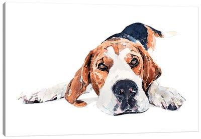 Beagle Play Time Canvas Art Print