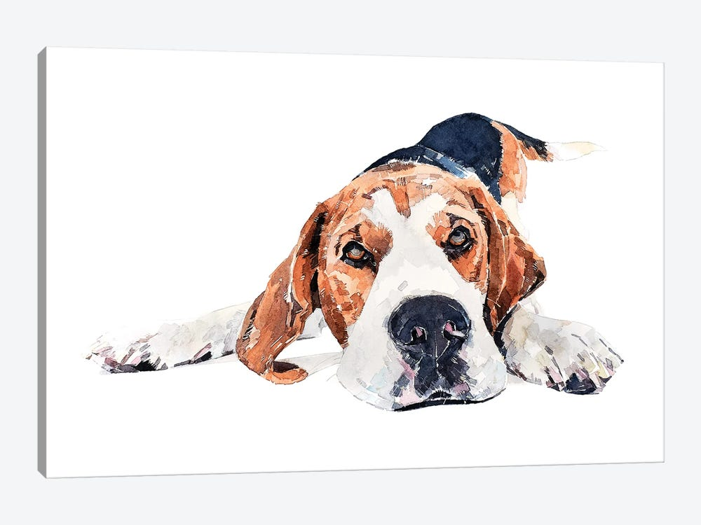 Beagle Play Time by EdsWatercolours 1-piece Canvas Print