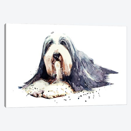 Bearded Collie I Canvas Print #EWC15} by EdsWatercolours Canvas Wall Art