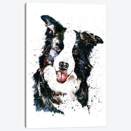 Pursuit Of Hapiness Border Collie Canvas Print #EWC163} by EdsWatercolours Art Print