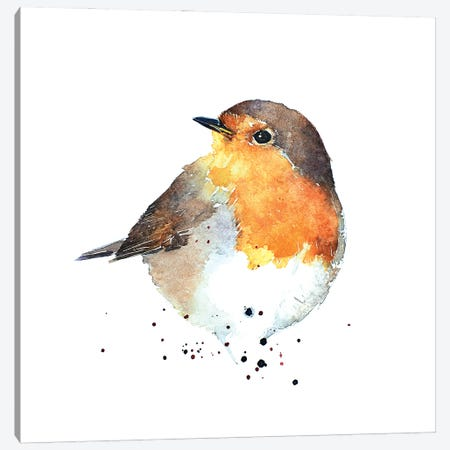 Red Breasted Robin Canvas Print #EWC167} by EdsWatercolours Canvas Artwork