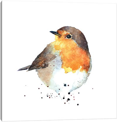 Red Breasted Robin Canvas Art Print