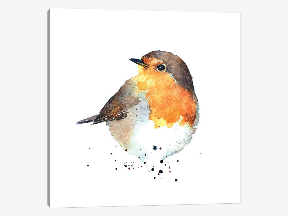 Red Breasted Robin by EdsWatercolours 1-piece Canvas Print