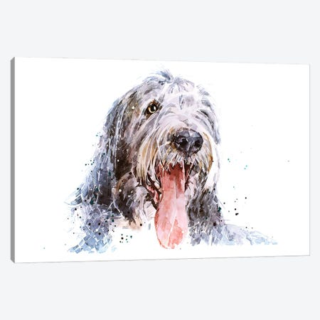 Bearded Collie II Canvas Print #EWC16} by EdsWatercolours Canvas Wall Art