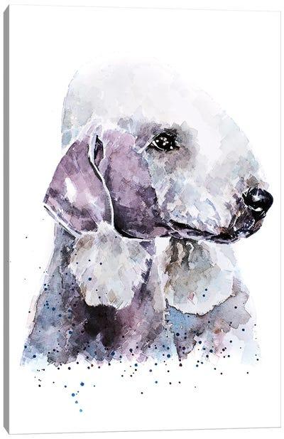 Bedlington Terrier I Canvas Art Print
