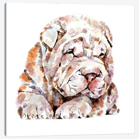 Shar Pei Canvas Print #EWC181} by EdsWatercolours Art Print