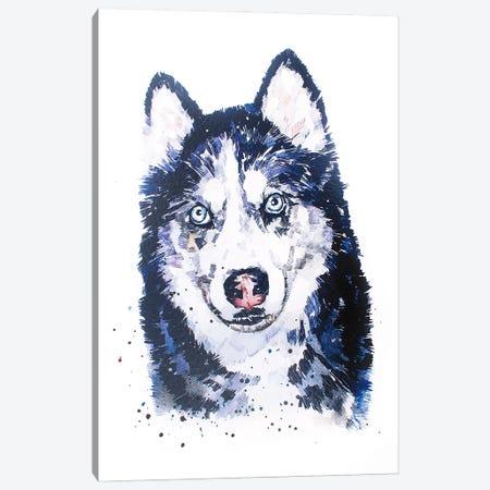 Siberian Husky Canvas Print #EWC182} by EdsWatercolours Art Print