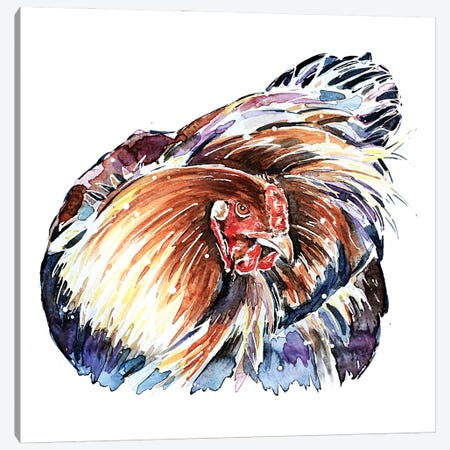 Stink Eye Hen Canvas Print #EWC188} by EdsWatercolours Canvas Art Print