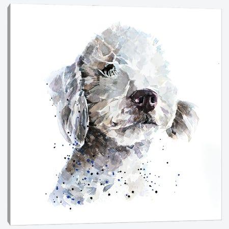 Bedlington Terrier III Canvas Print #EWC19} by EdsWatercolours Canvas Art Print