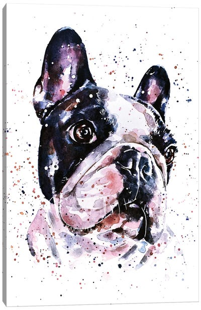 A Penny For Your Thoughts French Bulldog Canvas Art Print