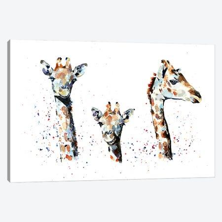 Tres Amigos Giraffees Canvas Print #EWC200} by EdsWatercolours Canvas Wall Art