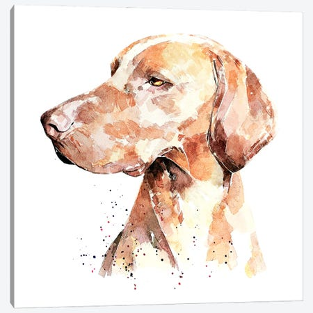Vizsla A Penny For Your Thoughts Canvas Print #EWC204} by EdsWatercolours Art Print