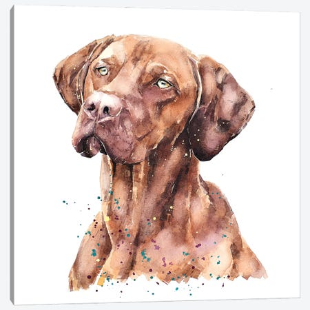 Vizsla Lost In Thought Canvas Print #EWC210} by EdsWatercolours Art Print