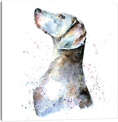 Weimaraner I Canvas Art Print