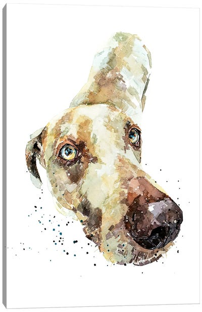Weimaraner III Canvas Art Print