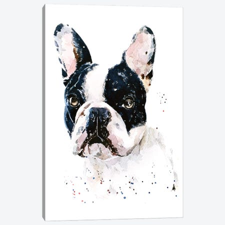 Best Of Both Worlds French Bulldog Canvas Print #EWC21} by EdsWatercolours Canvas Wall Art