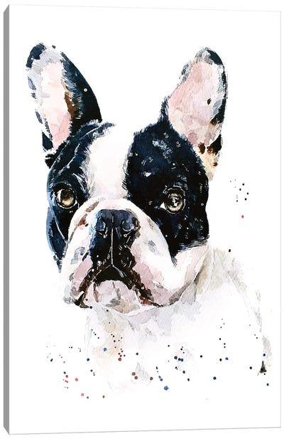 Best Of Both Worlds French Bulldog Canvas Art Print