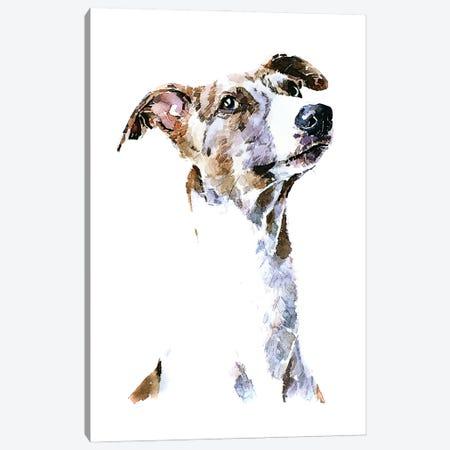 Whippet Canvas Print #EWC225} by EdsWatercolours Canvas Art Print