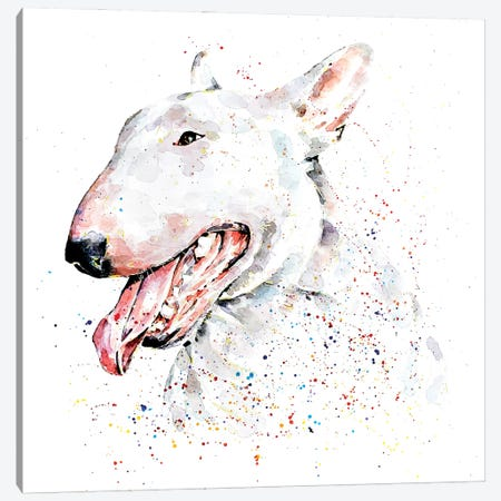White English Bull Terrier Canvas Print #EWC226} by EdsWatercolours Canvas Print