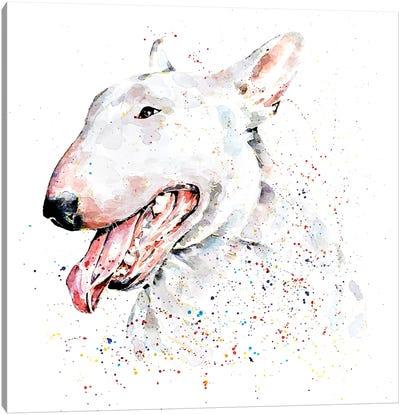 White English Bull Terrier Canvas Art Print