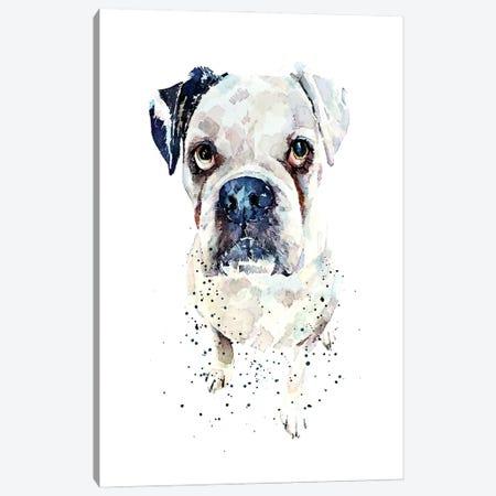 White German Boxer II Canvas Print #EWC228} by EdsWatercolours Canvas Wall Art