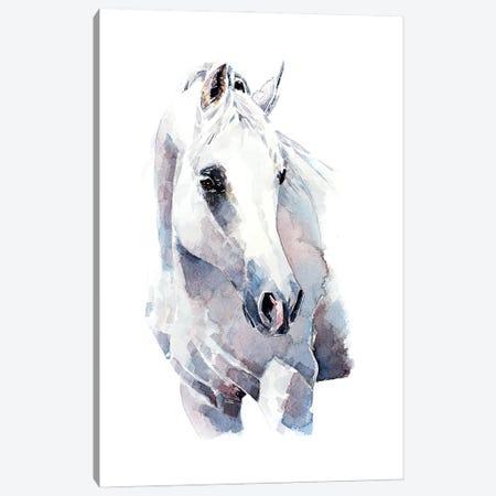 White Walker Horse Canvas Print #EWC230} by EdsWatercolours Canvas Print